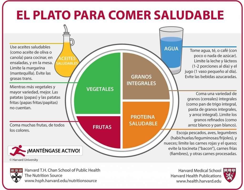 Harvard University El Plato para Comer Saludable