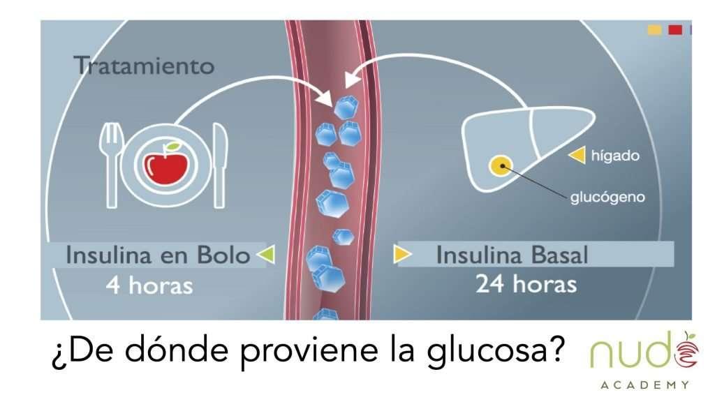 Diagrama Insulina basal bolo